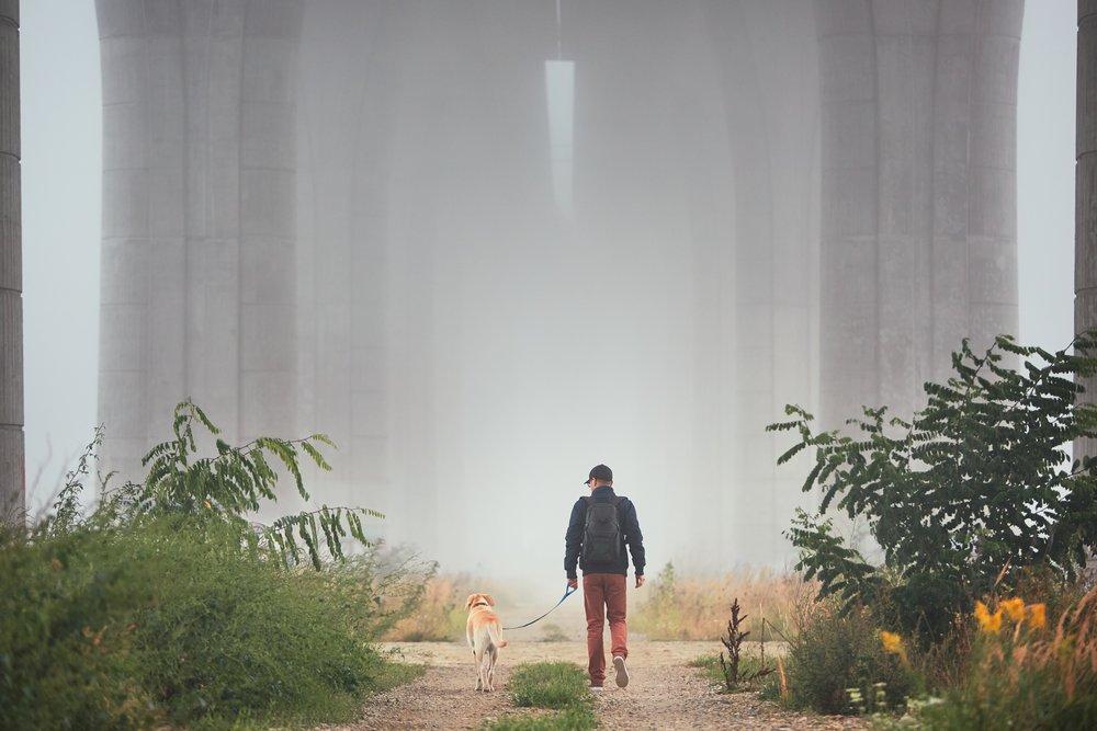 man-with-dog-in-mysterious-fog-PFSY2CY.jpg