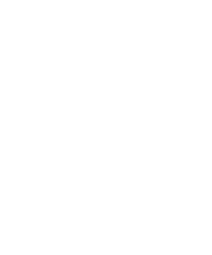 KGB Customs