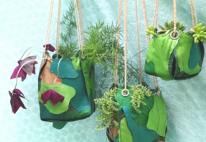 Plant hangers landscape.jpg