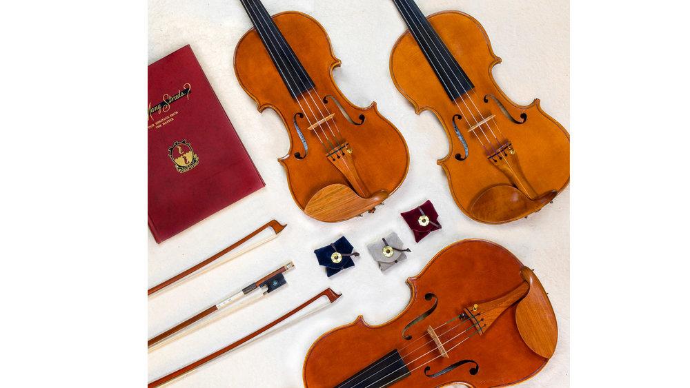 viola6.jpg
