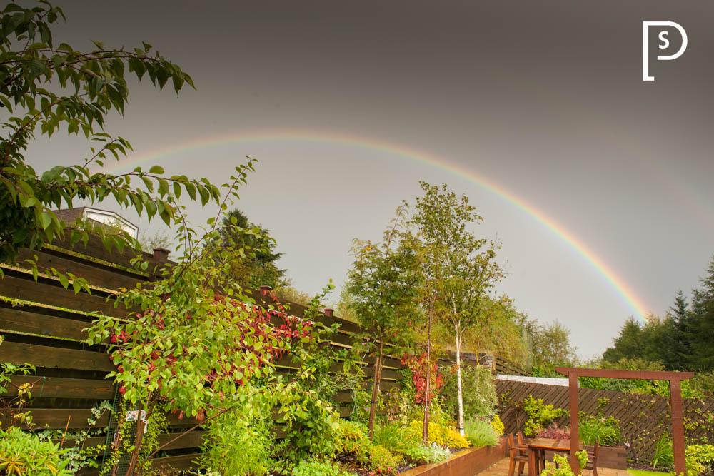 Rainbow-Scotland-5209.jpg