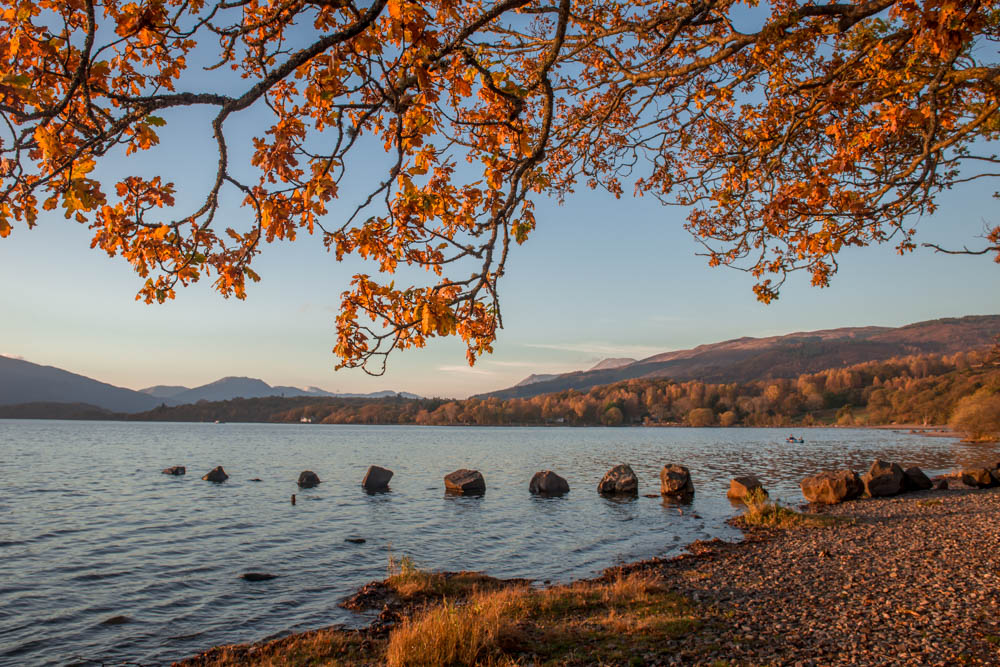 Autumn-Loch-Lomond-1960.jpg