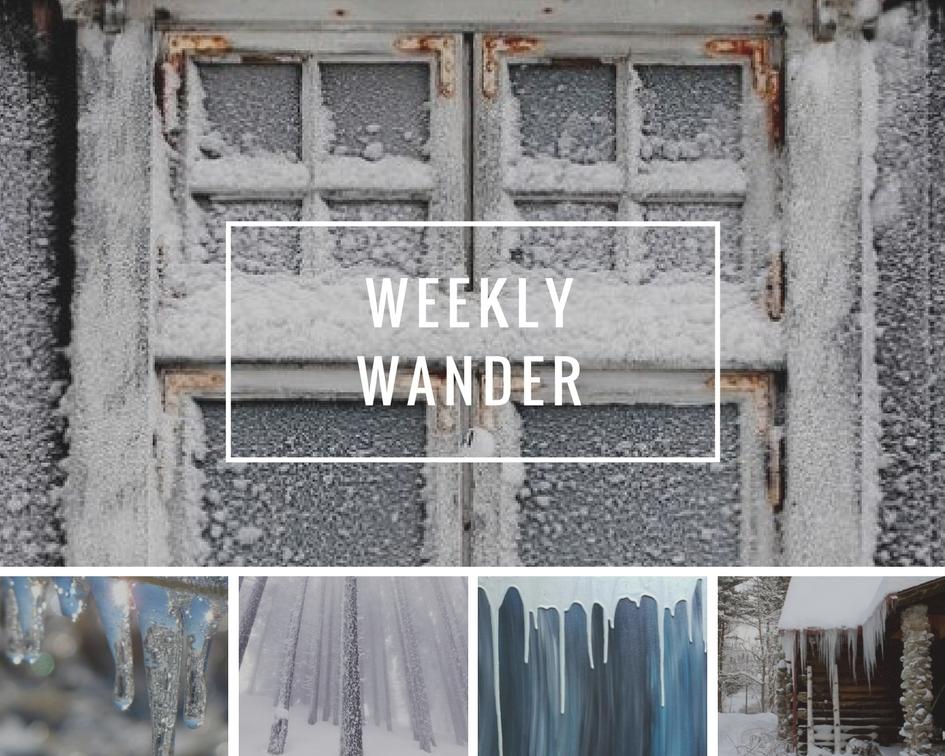 Copy of weekly wander 5 - winter green.jpg