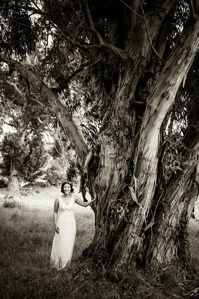 black-and-white-bride-and-tree.jpg