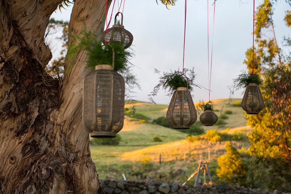 lanterns-twilight.jpg