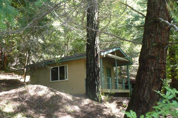 woods_cabin.jpg