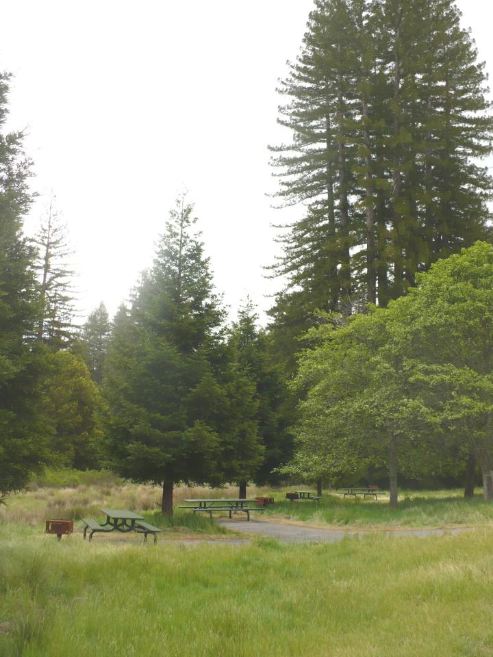 picnic area at little basin.jpg