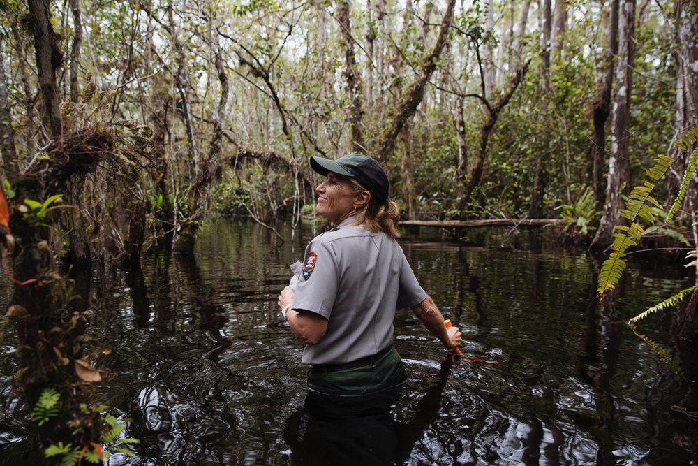 Lisa Andrews, an outreach and education coordinator for Big Cypress National Reserve, guides Christopher Richard, his wife Alyssa St. Claire and their daughter Casey on a swamp walk through the land behind Clyde Butcher's Big Cypress Gallery on Saturday, Oct. 28, 2017.