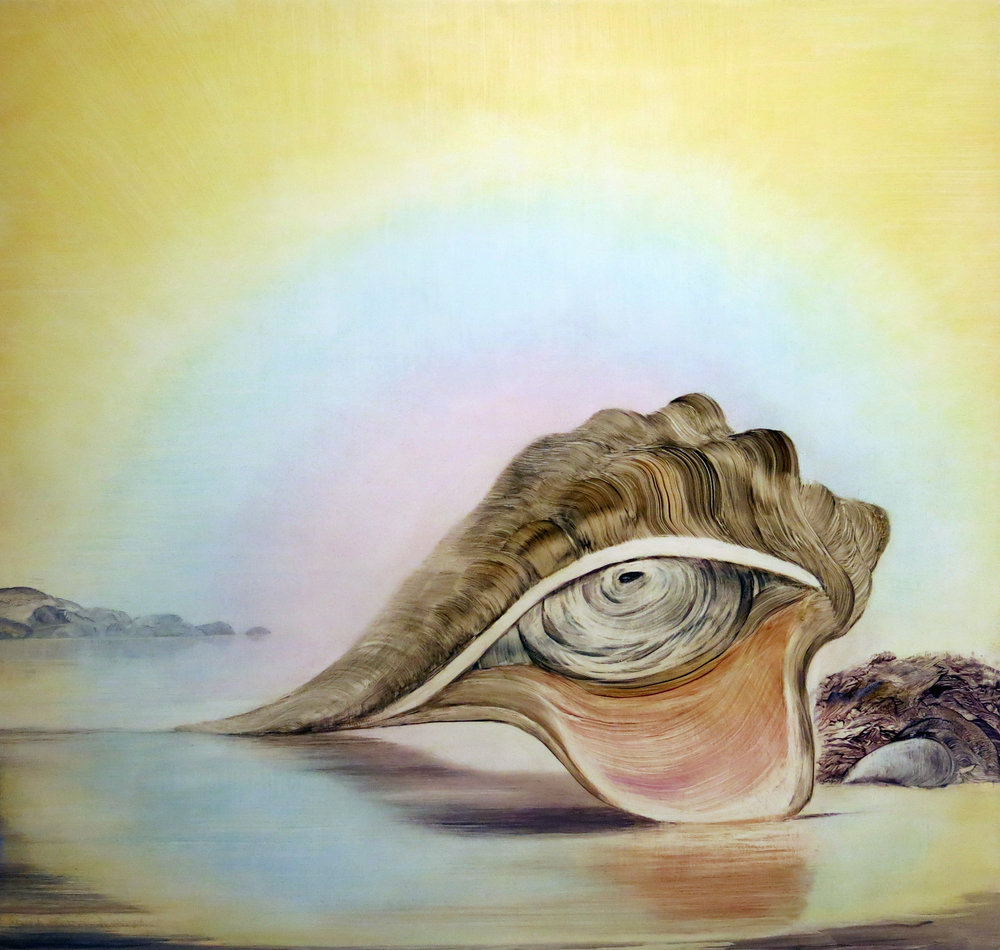 Shawn Spencer,  Whelk , Oil on birch panel, 25h x 24w in.