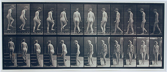 Eadweard Muybridge, 1887, Woman, Turning and Ascending Stairway , From The Human Figure in Motion Series (1901), Collotype, 20h x 25w in. (framed)