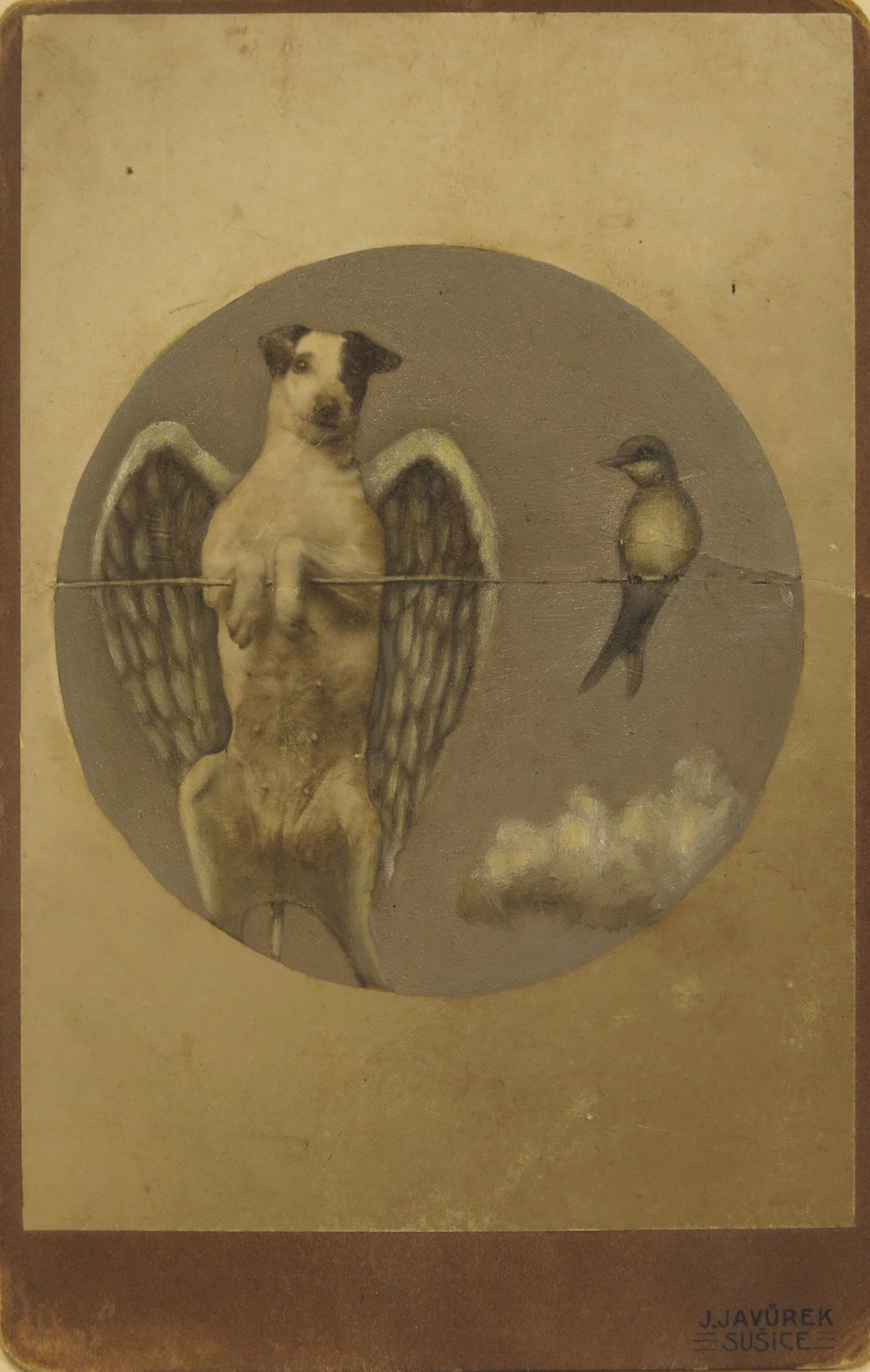 Jana Paleckova,  untitled (winged dog and bird on wire),  2016, oil paint on vintage photograph, 6 1/2h x 4w in.