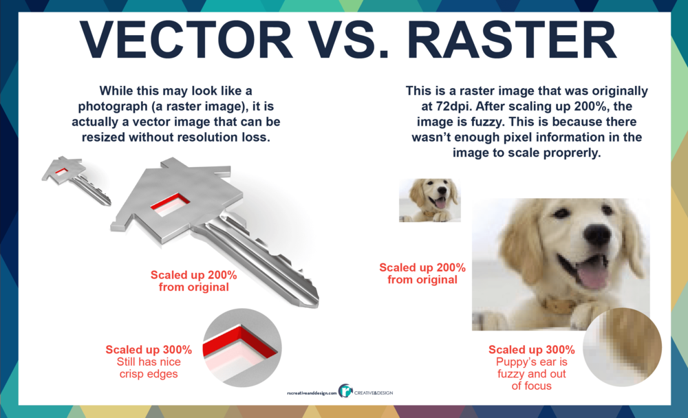 Visual difference between vector and raster images