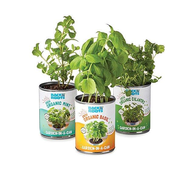 Garden in a Can -