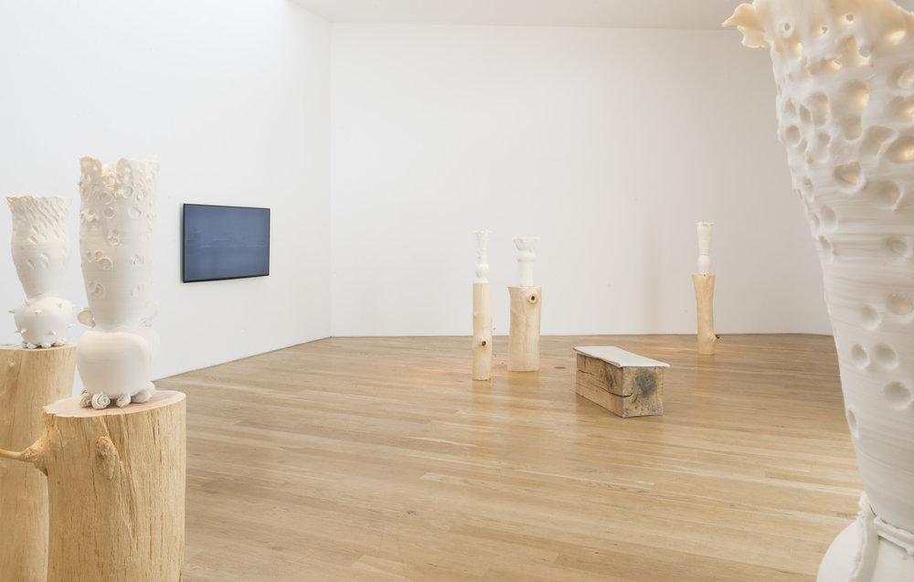 Mineo Mizuno  Current  Installation View, 2015