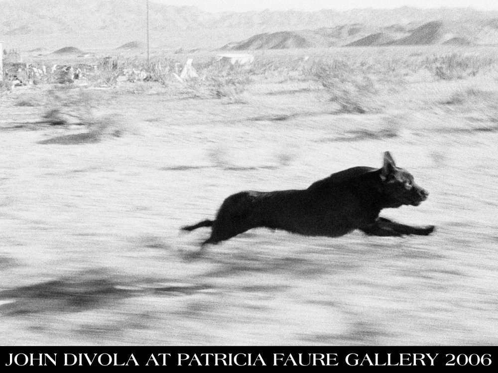 divola-invite-front.jpg