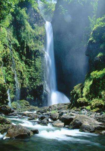 Hawaiian Water Falls of Breath of      Life.jpg