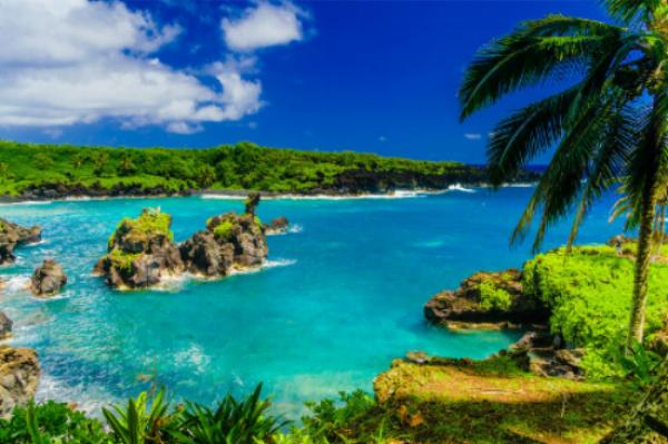 hawaii water beach.jpg