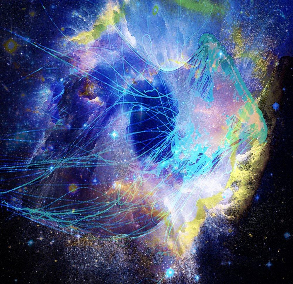 space jellyfish.jpg