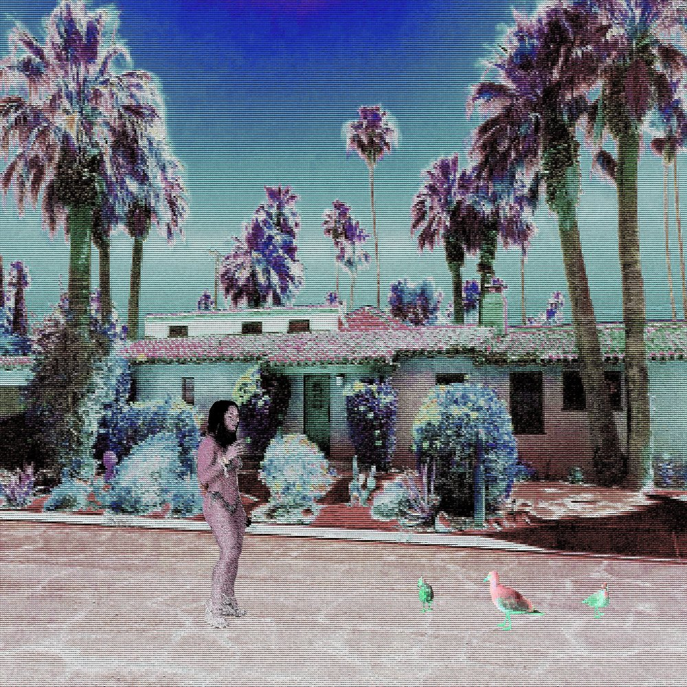 birds and palms.jpg