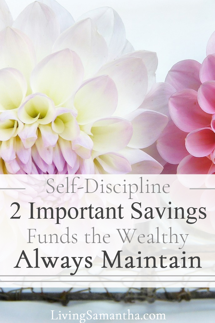 Self-discipline is not a dirty word. The ability to control yourself will give you a huge advantage in life. Make a financial plan and stick with it, learn the 2 important savings funds the wealthy always maintain.