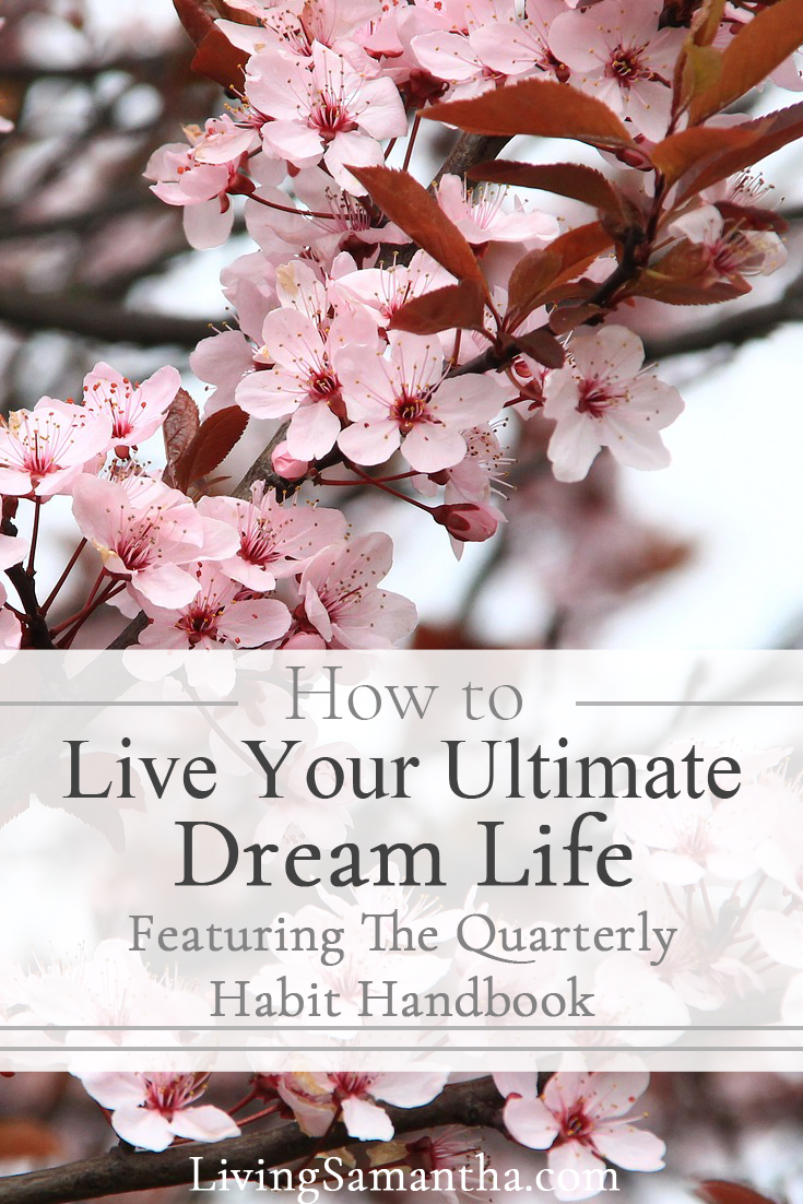 Learn to Live your Ultimate Dream Life by applying the step by step actionable steps in the quarterly habit handbook.