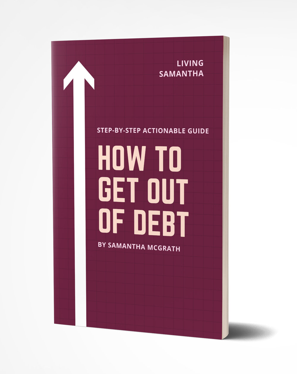 How to Get Out of Debt Mock Up 2.jpg