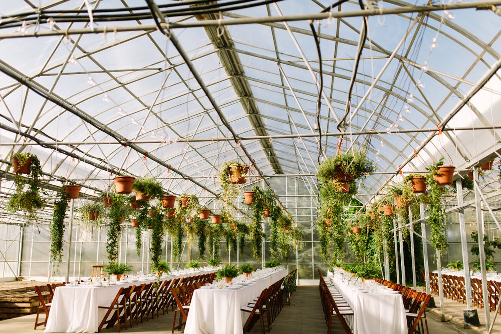 Saskatoon_Farm_Greenhouse_Wedding0043.jpg