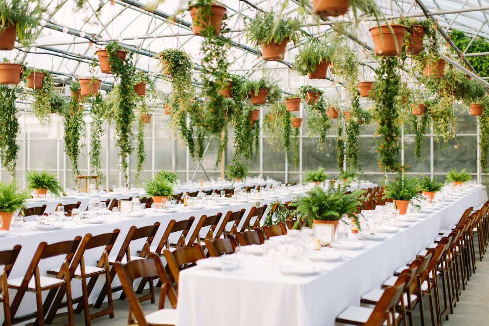 Saskatoon_Farm_Greenhouse_Wedding0045.jpg