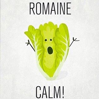 romaine-calm.jpg