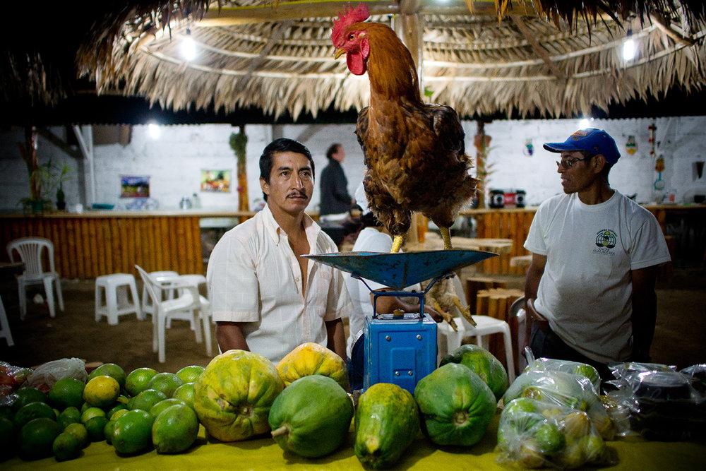 05_08_Agroecology_MijailVallejo_mishavallejo@gmailcom.JPG