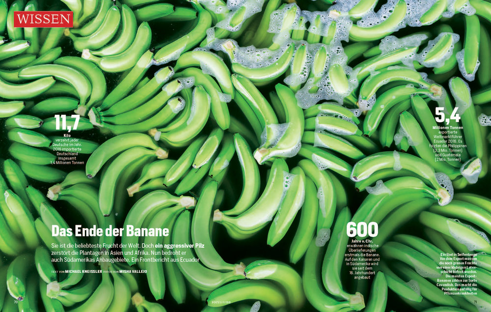 Banana disease_Page_1.jpg