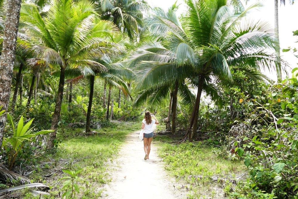 Panama - Playa Estrella (5).jpg