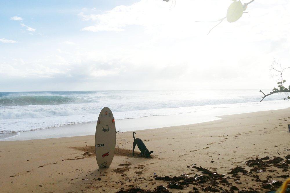 Panama-Surf Bocas (18).jpg