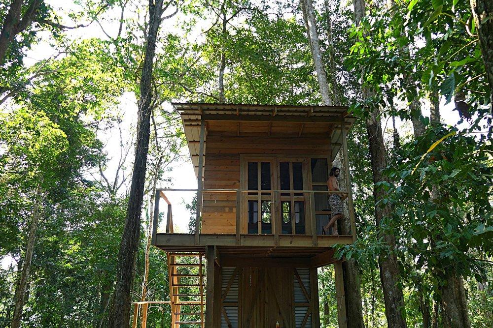 Tree House Cabin avec salle de bain privative au Nomad Tree Lodge, Bocas del Toro
