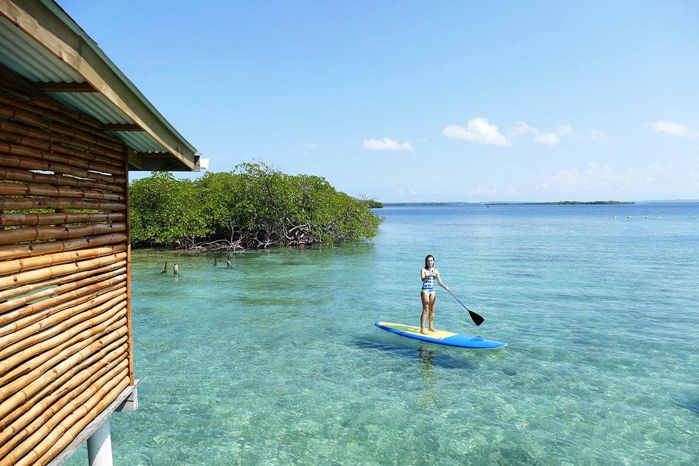 Location Stand Up Paddle au Blue Coconut, Solarte, Bocas del Toro - Swimwear neoprène :  Glidesoul