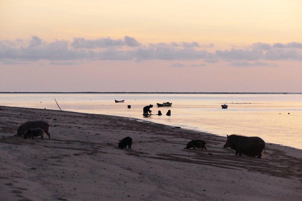 Rote Island Indonesia (28).jpg