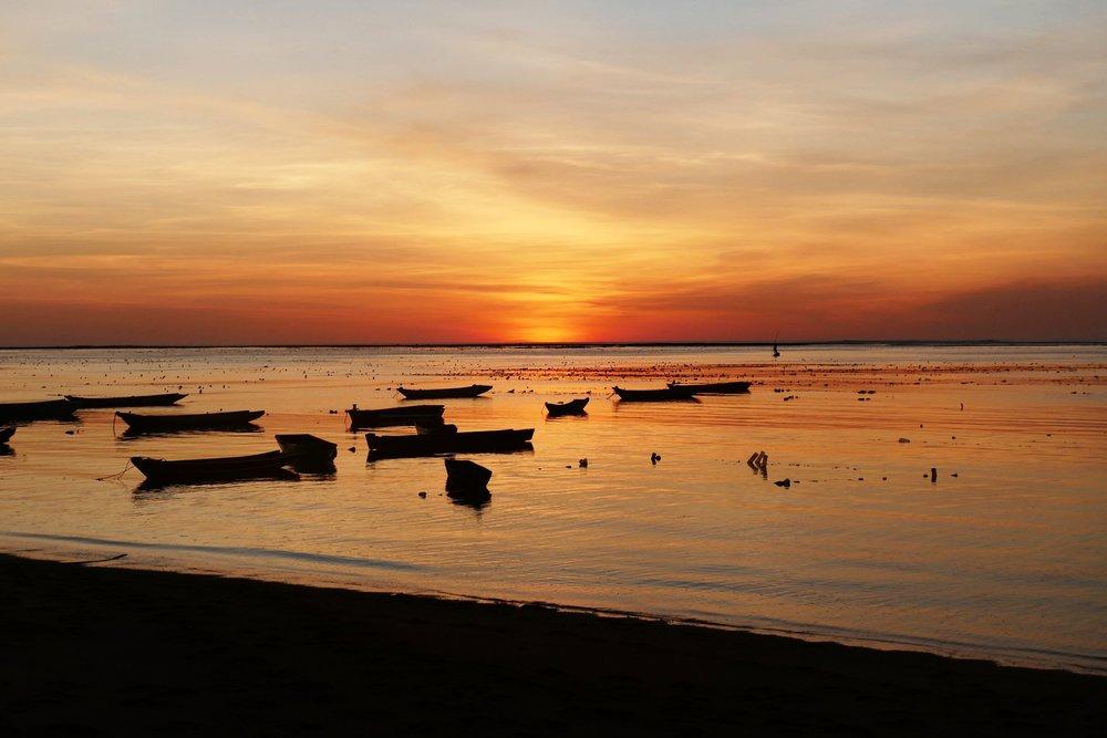 Rote Island Indonesia (40).jpg