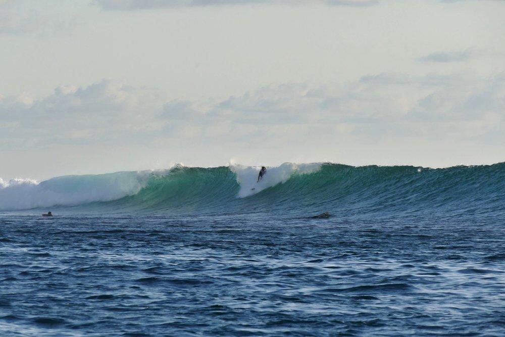 Rote Island Indonesia (47).jpg