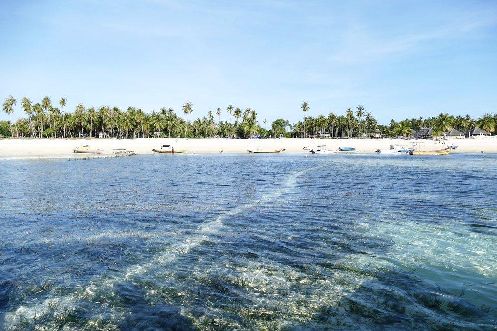 Rote Island Indonesia (34).jpg