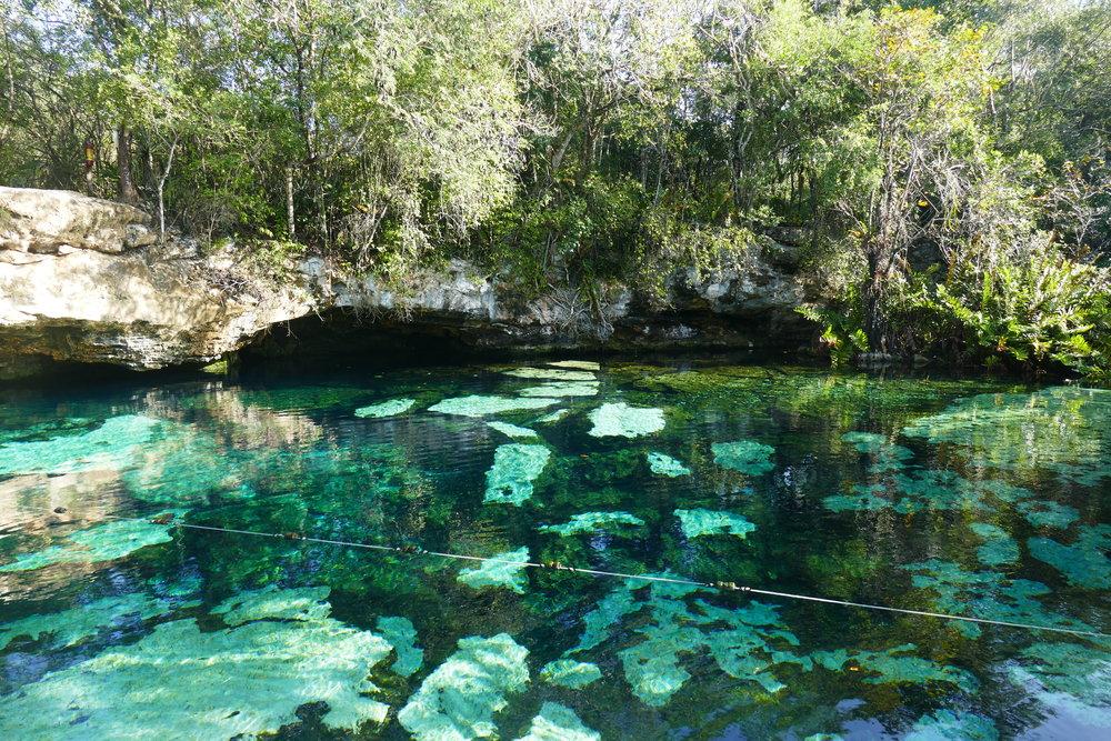 Cenote Azul - Quintana Roo, Mexico