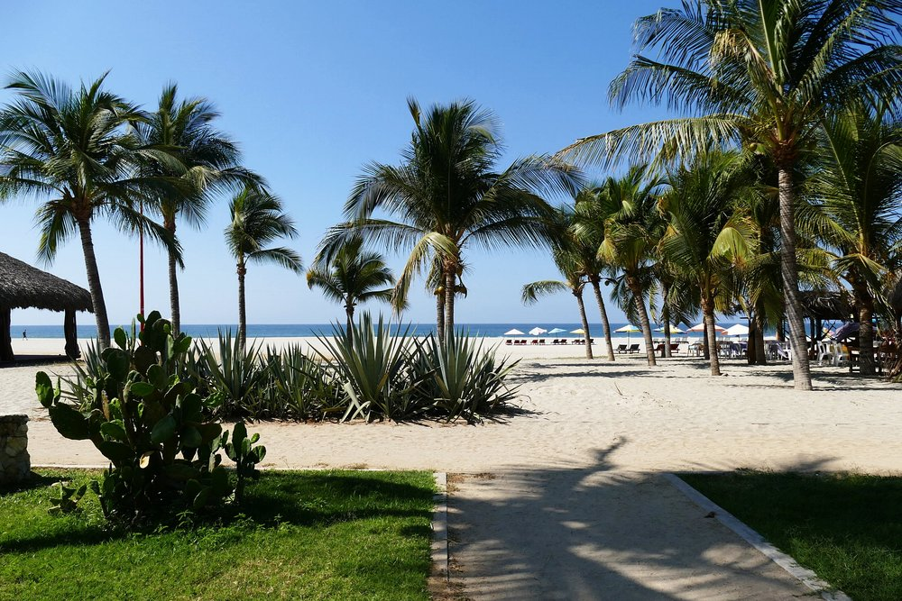 Puerto Escondido Mexico 2018 (610).JPG