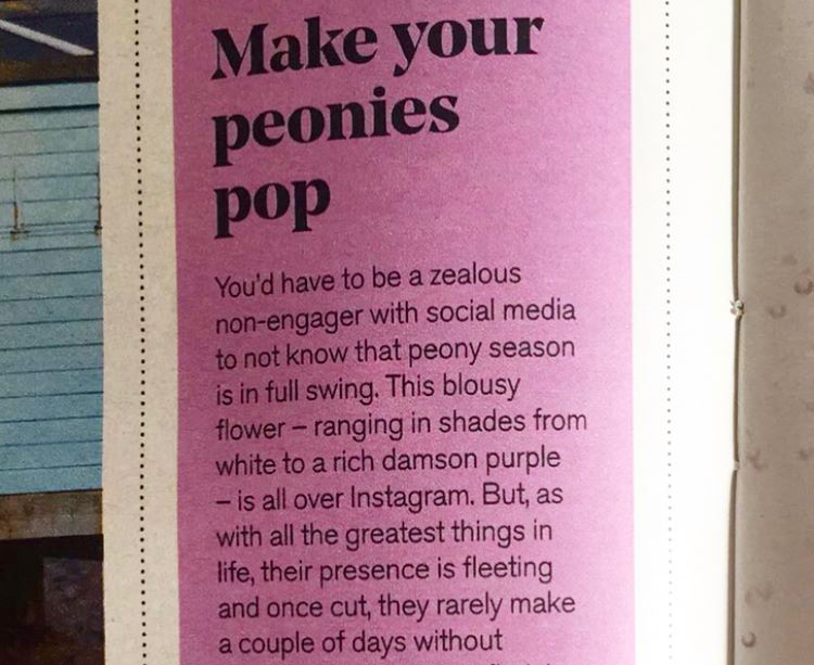 How to make your peonies pop,  Stylist  magazine, July 2017