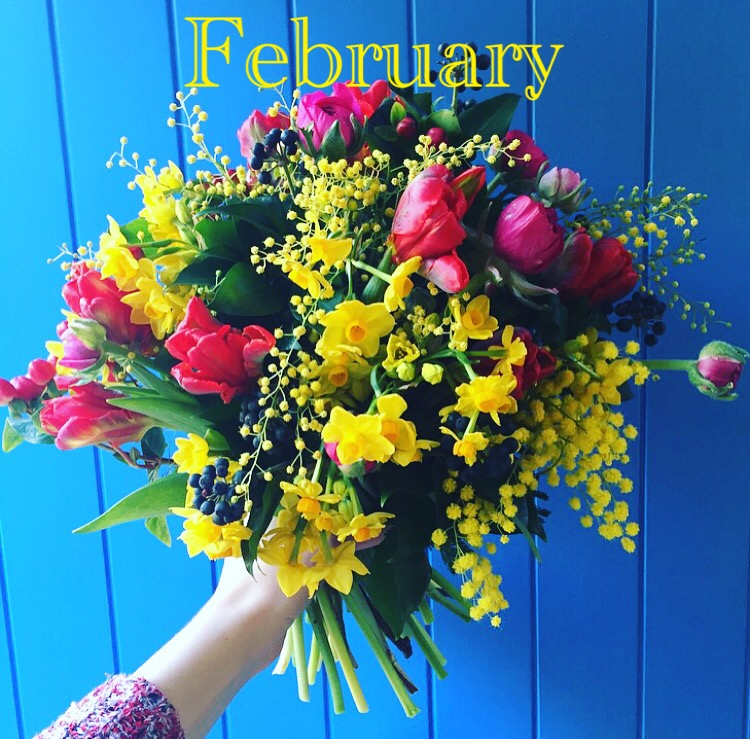 La La Land and the power of frivolity,  Flowers By Daisy  newsletter, February 2017.
