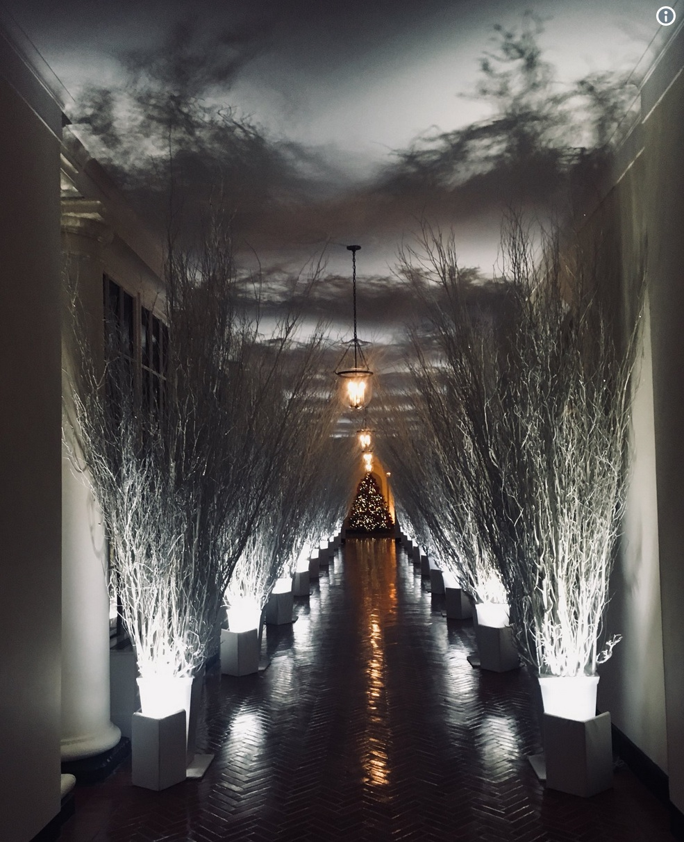 white house christmas.jpg