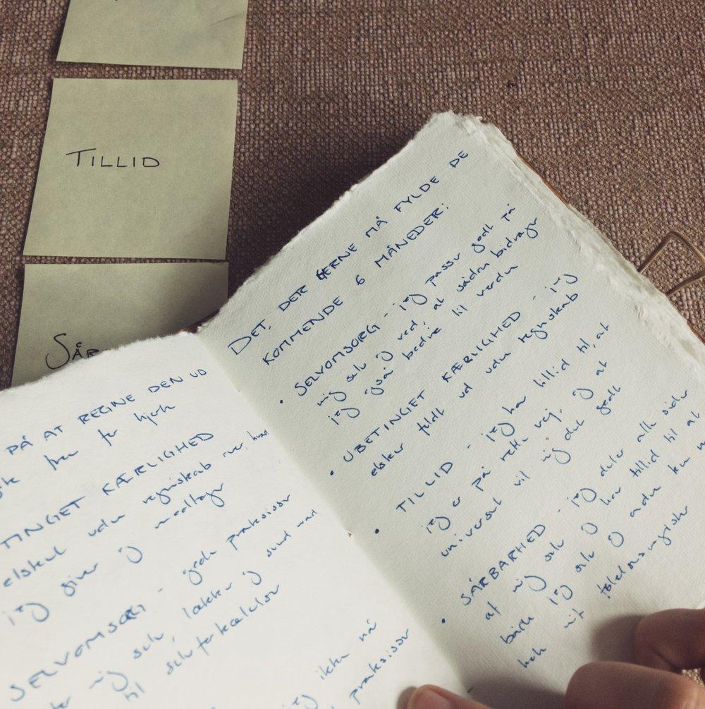 9. Beskriv dine nye værdier - Beskriv i din notesbog, hvad dine nye værdier/væremåder betyder for dig. Hvordan er det for dig, når du lader hver enkel af dem fylde i dit liv?
