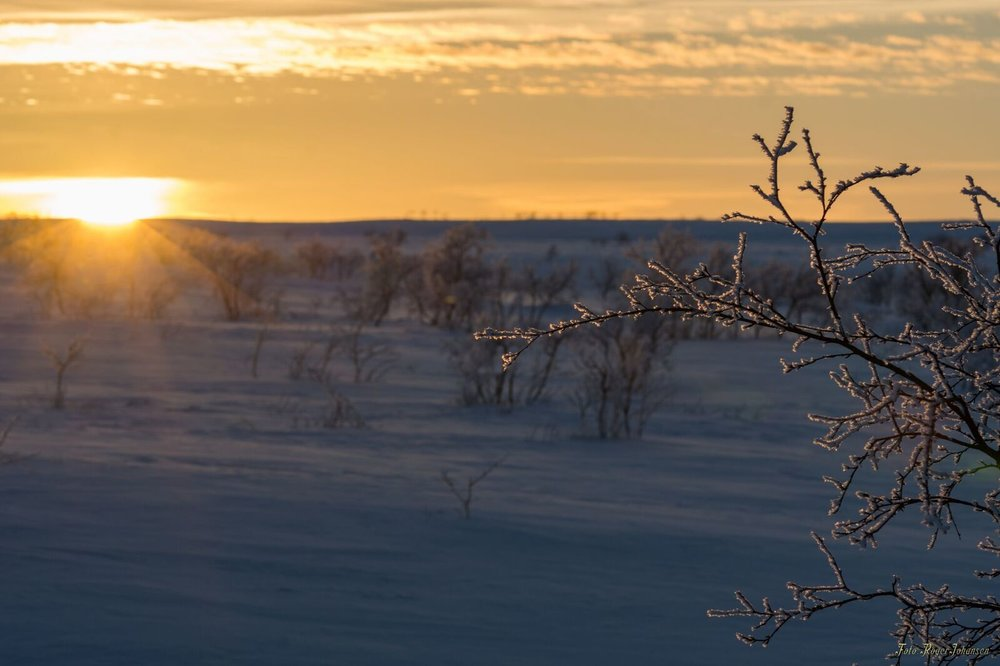 Do you dream about crossing the Finnmark Plateau on ski? Now you have the opportunity! - Join NORD Ekspedisjon on an unforgettable Journey over the frozen landscape, where you will experience the Arctic silence, the wilderness and the amazing light.