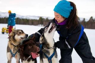 Hundekjøring HH.jpg