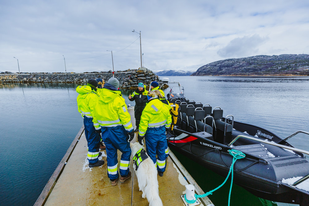 EXPLORE THE ARCTIC OCEAN - With NORD Ekspedisjon you can experience the great fjord by RIB. We can offer a variety of trips: from transportation and sightseeing to