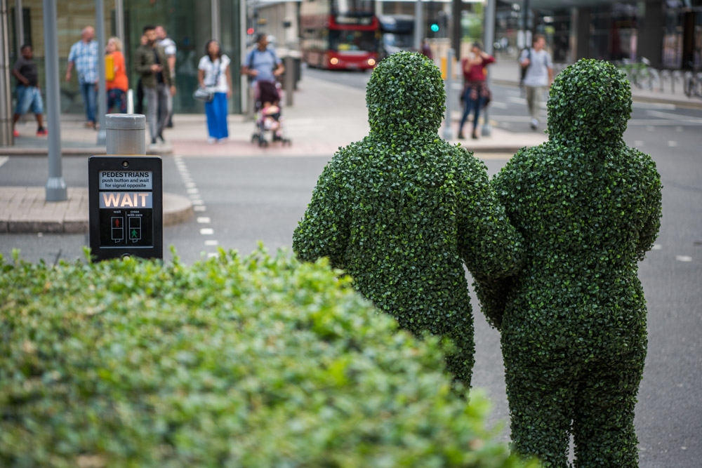 canarywharf_hedge-2.jpg