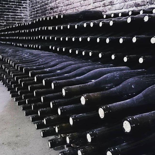 Repost @carlottacasciola: Cositas interesantes que se están haciendo en @bodegagarciarevalo @dorueda . . . #winelover #vino #Verdejo #lovewine #Rueda #CyL #wineguide #instawine #winetours #enoturismo #instawine #verdejoderueda